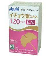 シュワーベ ギンコ 120 60粒 2個セット 【送料無料】 (120EX)