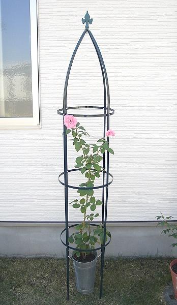 立体感のあるお庭づくりに背が高い鉄製のオベリスク バラ・クレマチスに鉄製オベリスク高さ193cm【薔薇】【つるバラ】【クライマー】【つる性】【タワー】
