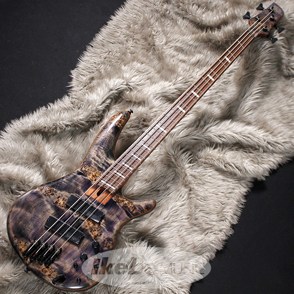 Ibanez Bass Workshop SRMS800-DTW 【即納可能】