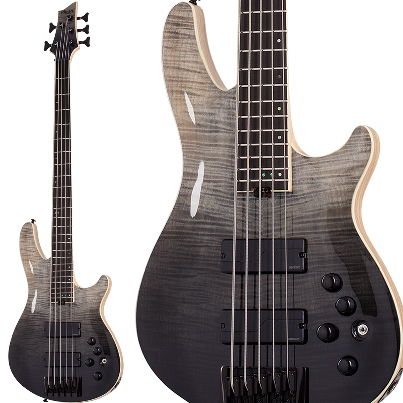 SCHECTER SLS Elite-5 (Black Fade Burst)