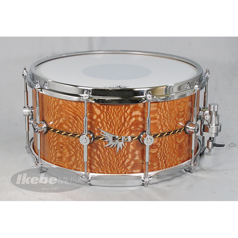 当店だけの限定モデル HENDRIX DRUMS Archetype DRUMS with Series Lacewood 14