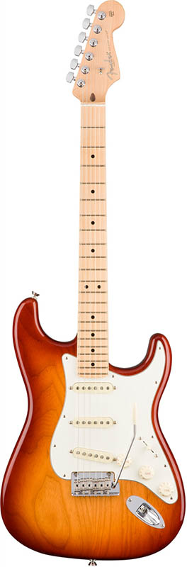 Fender American Professional Stratocaster (Sienna Sunburst/Maple) [Made In USA] 【ikbp5】