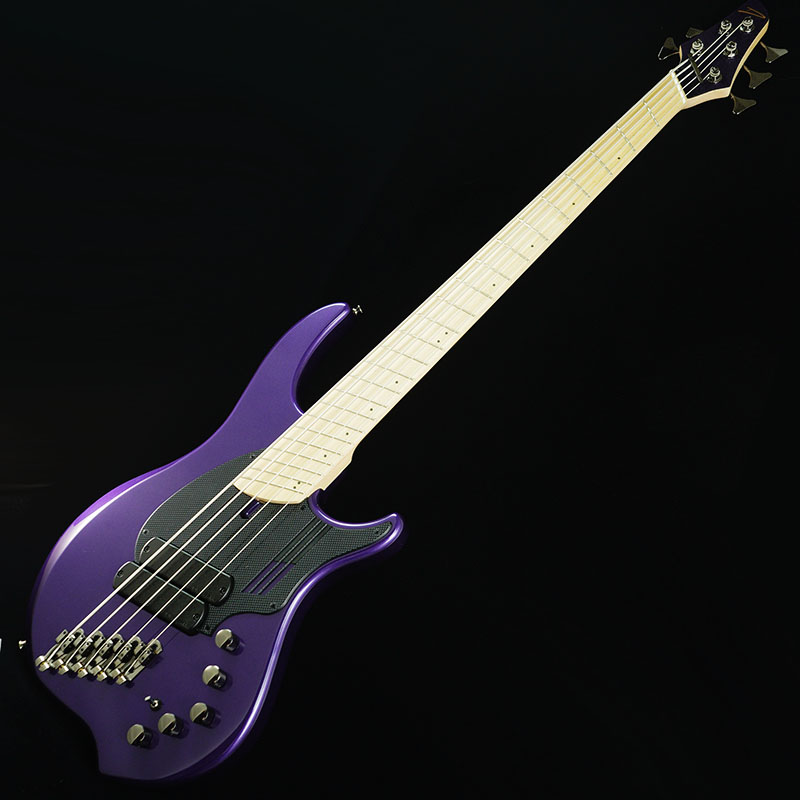 "Dingwall NG-2 5strings Adam ""Nolly"" Getgood Signature Model (Purple Metalic)"