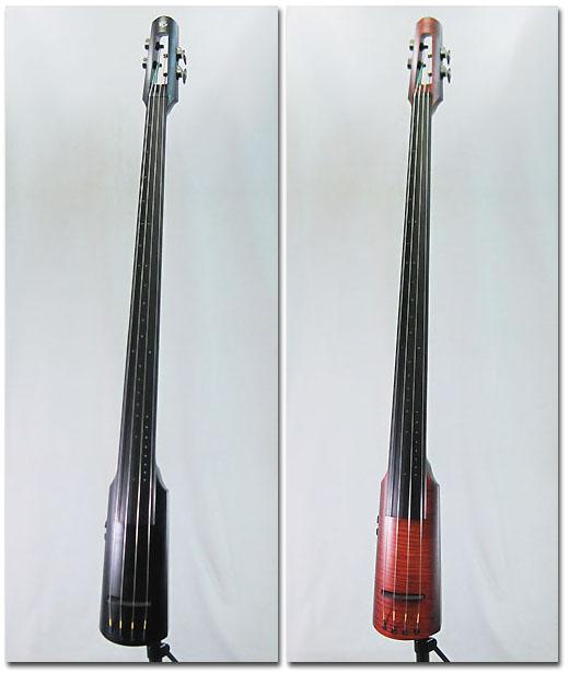 NS Design NXT4 Double Bass