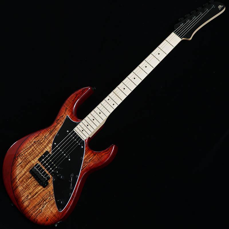 STR GUITARS James Tyler Guitars Design SSH #JTD0002 【ディバイザー商談会選定品】