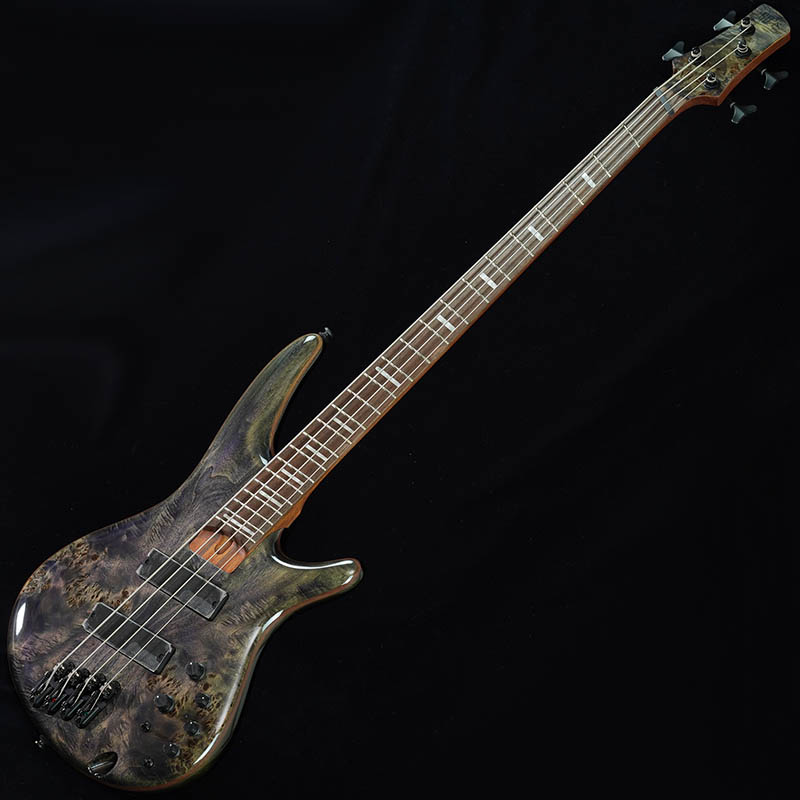 Ibanez Bass Workshop SRMS800-DTW 【特価】