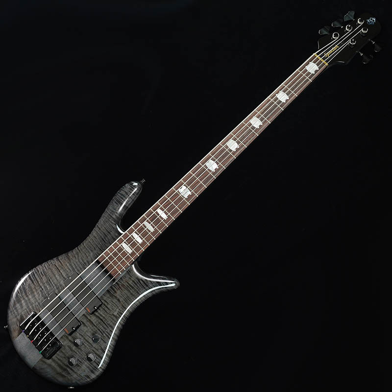 Spector Euro 5 LX (Black Stain Gloss)