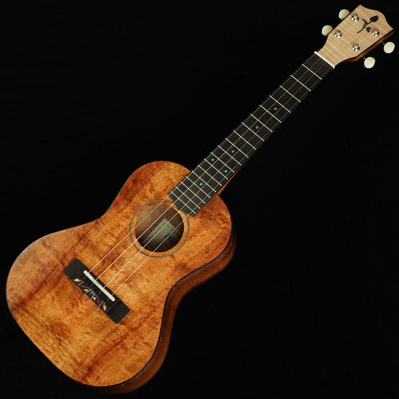 FUJIGEN FGN Acoustic
