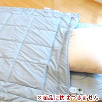 【回復】イーキュア健康ケット(ダブル)【癒し】【健康寝具】