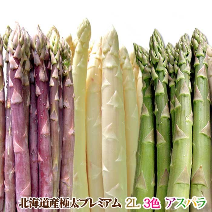 【予約販売】アスパラガス 北海道産 アスパラ 3色 ( グリーン ホワイト パープル )2L 合計1kg 送料無料