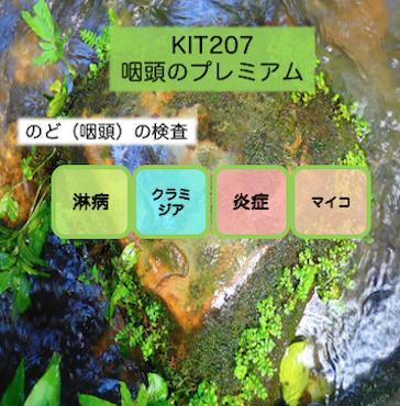 【送料無料】KIT 207 アイラボの「咽頭のプレミアム」【あす楽対応】検査項目:淋病、クラミジア、マイコプラズマ2種、ウレアプラズマ2種、咽頭炎