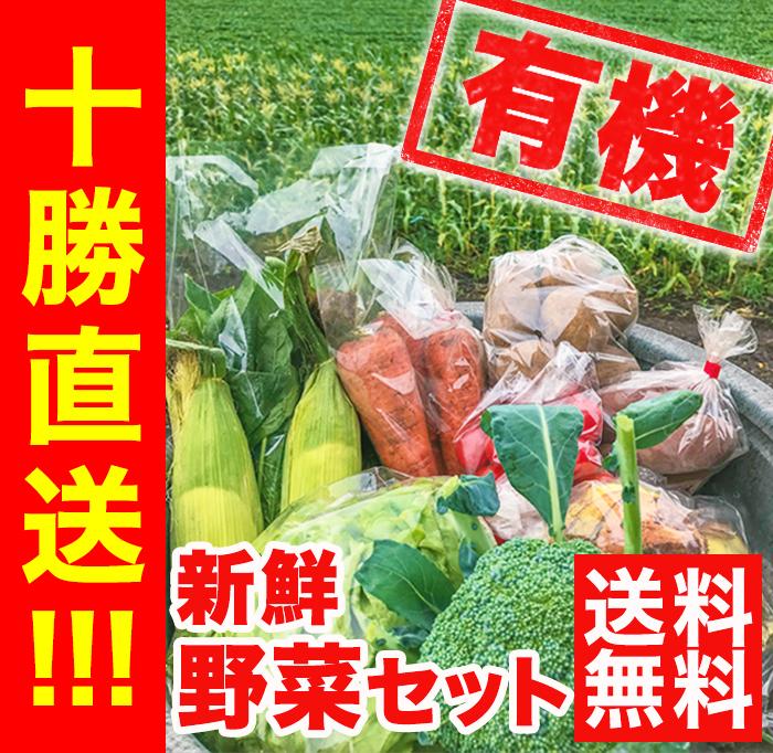 十勝産 新鮮有機野菜セット(12種)