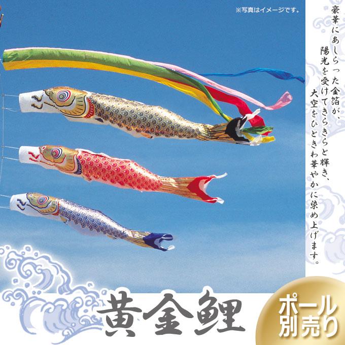 【こいのぼり】黄金鯉(6M6点セット)
