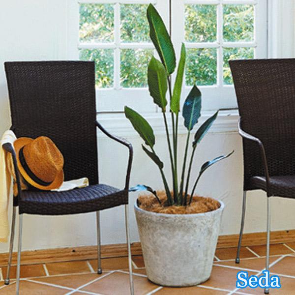 【Seba セバ】 BCD-7357-BK/BR/N アームチェア カフェ バー ダイニング 椅子 アジアン 【送料無料】