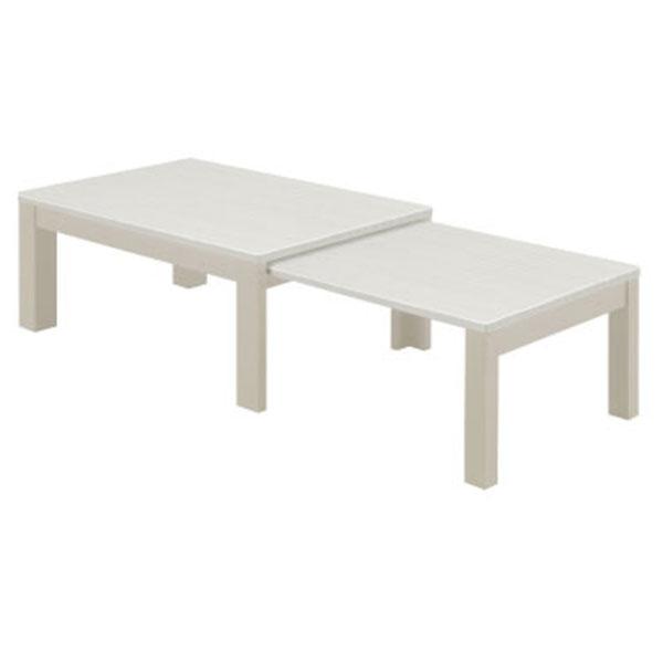 リビングテーブル センターテーブル 【エコー センターテーブル Aタイプ】
