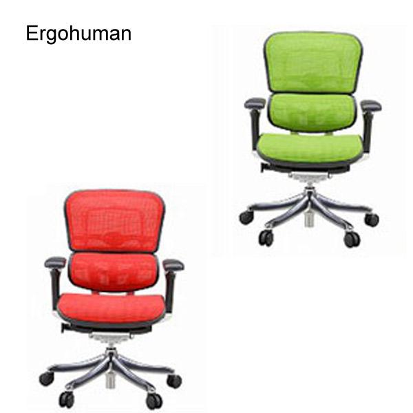 Ergohuman PRO エルゴヒューマン プロ 【EHP-LAM ロータイプ】 チェアー 椅子 ワーキングチェア