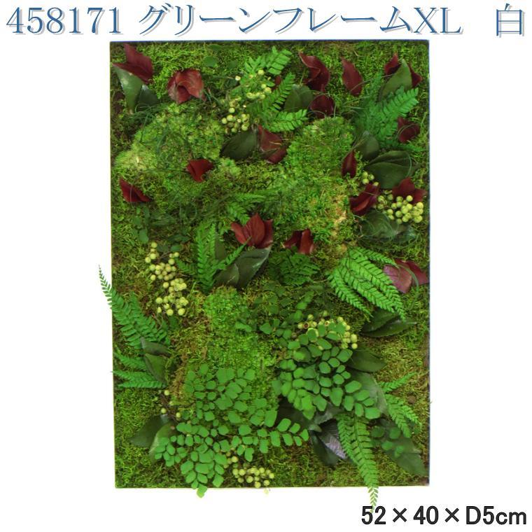 【送料無料(北海道・沖縄・離島を除く)】花なもの 458171 プリザーブドグリーン グリーンフレームXL 長方形 白【お取寄せ品】【プリザーブド,母の日ギフト,花,フラワー】