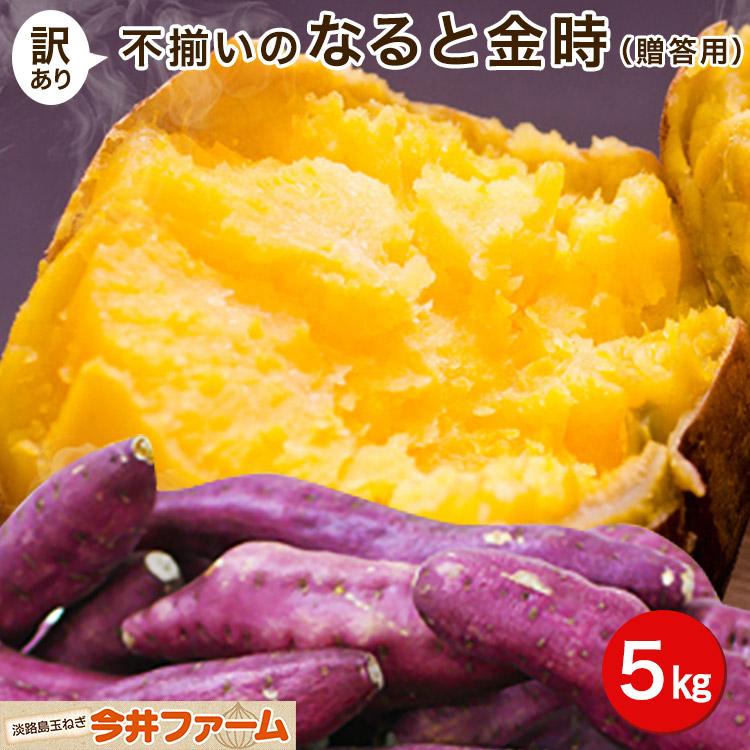 【送料無料】訳あり・不揃いのなると金時 5キロ  徳島県鳴門産 サツマイモ さつまいも#訳ありなると金時5キロ#さつまいも