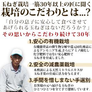 【予約 商品】淡路島産新たまねぎ#かくし玉2K#