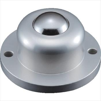 (株)エイテック プレインベア ゴミ排出穴付 上向き用 スチール製 PV260FH [ PV260FH ]