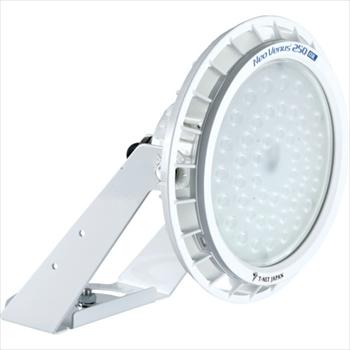 (株)ティーネットジャパン T-NET NT250 投光器型 レンズ可変仕様 電源外付 30° 昼白色 [ NT250NLSFA30 ]