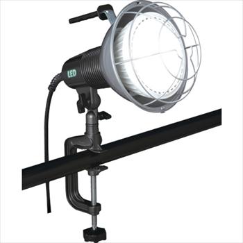 (株)ハタヤリミテッド ハタヤ 42W LED作業灯 100V 42W 10m電線付 [ RXL10W ]