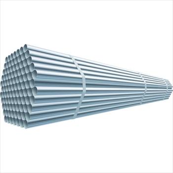 大和鋼管工業(株) 大和鋼管 スーパーライトパイプ 3.0m ピン無 [ SL30 ]