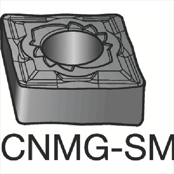 サンドビック 株 コロマントカンパニー T-Max P チップ H13A 10個セット 永遠の定番モデル 旋削用ネガ ついに入荷 CNMG160616SM
