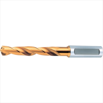 オーエスジー(株) OSG 一般用加工用穴付き レギュラ型 ゴールドドリル 64170 [ EXHOGDR17 ]