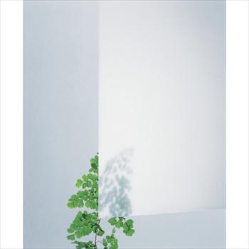 (株)光 光 アクリルキャスト板 乳白半透明 3X1860X930 穴ナシ [ KAC91833 ]