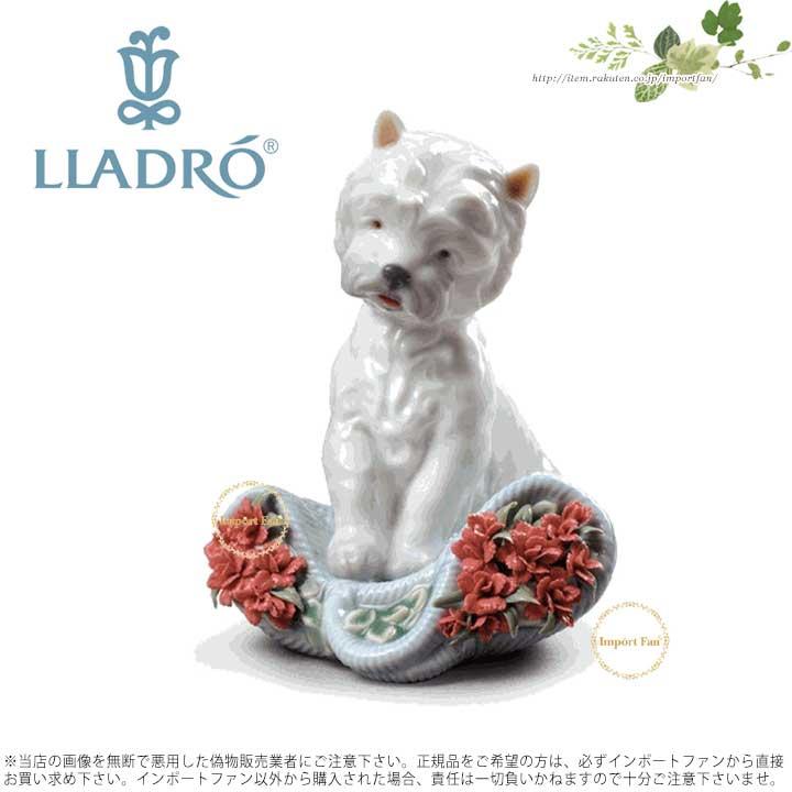 リヤドロ いたずらっ子 (スペシャルバージョン) 子犬01008065 LLADRO PLAYFUL CHARACTER (CARNATIONS) □
