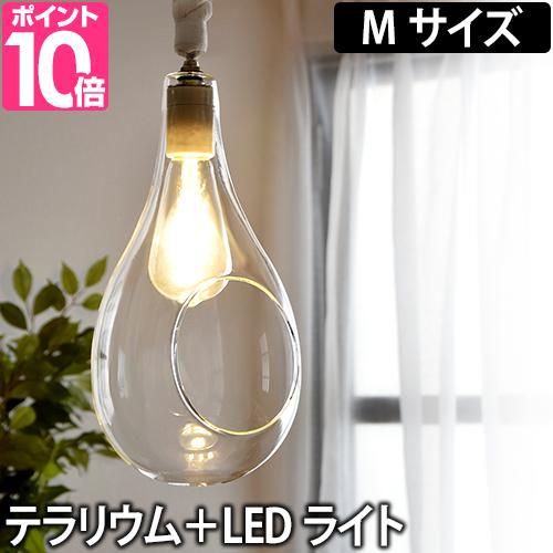 ペンダントライト ボタニックハンギングライト Mサイズ テラリウム植物 照明 日本製 LED ディスプレイ Another Garden アナザーガーデン APE-021WH
