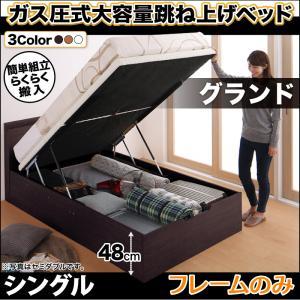 お客様組立 搬入楽々棚コンセント跳ね上げベッド Free-Gate フリーゲート ベッドフレームのみ 縦開き シングル 深さグランド