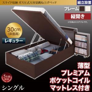 組立設置付 スライド収納_大容量ガス圧式跳ね上げベッド Many-IN メニーイン 薄型プレミアムポケットコイルマットレス付き 縦開き シングル 深さレギュラー
