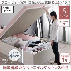 お客様組立 クローゼット感覚ガス圧跳ね上げベッド aimable エマーブル 国産薄型ポケットコイルマットレス付き 縦開き シングル ショート丈 深さグランド