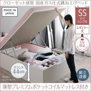 組立設置付 クローゼット跳ね上げベッド aimable エマーブル 薄型プレミアムポケットコイルマットレス付き 縦開き セミシングル レギュラー丈 深さグランド