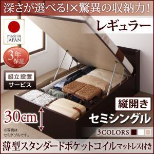 組立設置付 国産跳ね上げ収納ベッド Clory クローリー 薄型スタンダードポケットコイルマットレス付き 縦開き セミシングル 深さレギュラー日本製ベッド 国産ベッド 日本製 高級ベッド