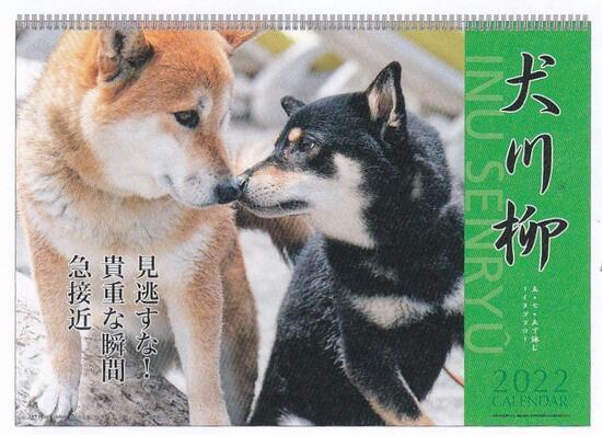 メーカー公式ショップ 犬川柳 2022年壁掛けカレンダー 1.犬川柳 数量は多 1000120044 350 アートプリントジャパン mail 12月始まり