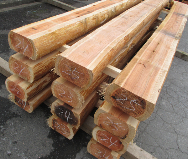 山武杉(さんぶすぎ)タイコ 未乾燥材3000×140×220~240ミリ