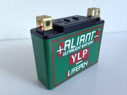 1万円以上のご注文で送料無料!【ALIANT】アリアント YLP07