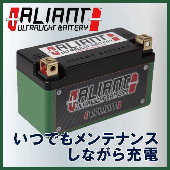 1万円以上のご注文で送料無料!【Aliant】 アリアント X2 BMSを内蔵 バッテリー単体でメンテナンスをしながら充電 リチウムバッテリー