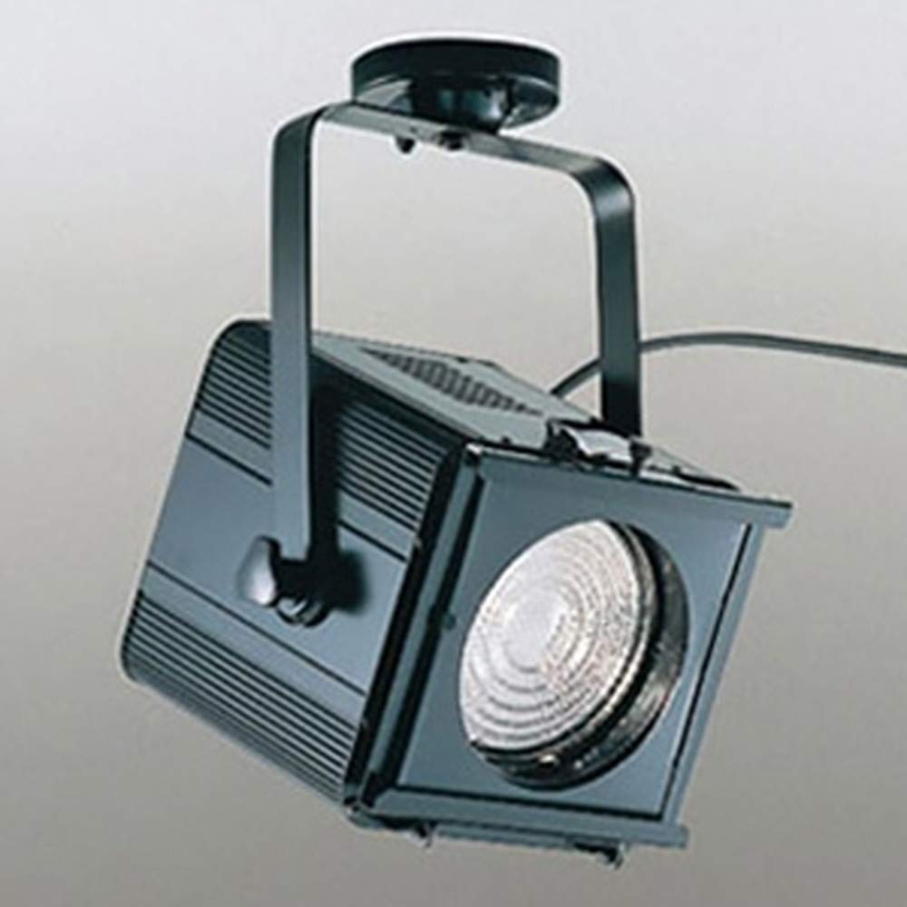 オーデリック(ODELIC) フレネルレンズスポットライト(カラーフィルター付き) ブラック OE031030 【TC】【送料無料】