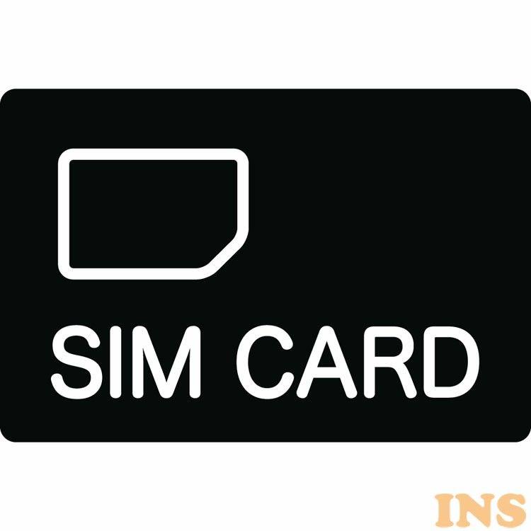 《1,000円OFFクーポン配布中》グローバル対応SIMカード(3GB) GS-3  送料無料 シムカード グローバル 海外 3GB キングジム 【D】【B】