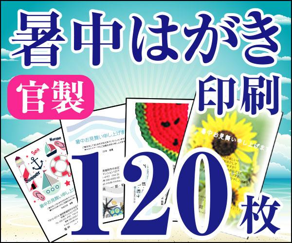 【暑中はがき印刷】【120枚】【かもめーる】【フルカラー】【レターパック360無料】