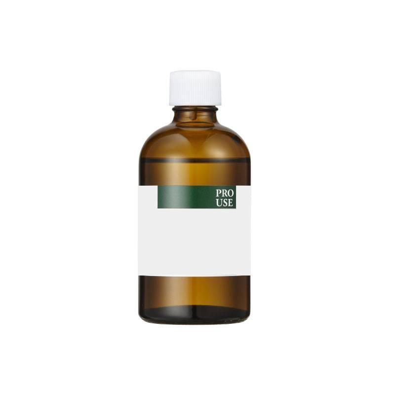 アロマオイル 生活の木 ブラックカラントバッドAbs.(10%希釈) 100ml エッセンシャルオイル 精油