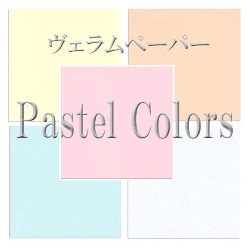 優しい色みのヴェラムペーパーセット 写真に重ねたり タイトル文字の書き写しに便利 値引き ヴェラムペーパー PASTEL 日本未発売 COLORS 6色セット スクラップブッキング ペーパー ネット特価