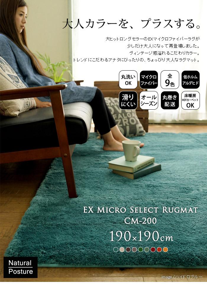 EXマイクロセレクト洗えるラグマット(190×190cm)