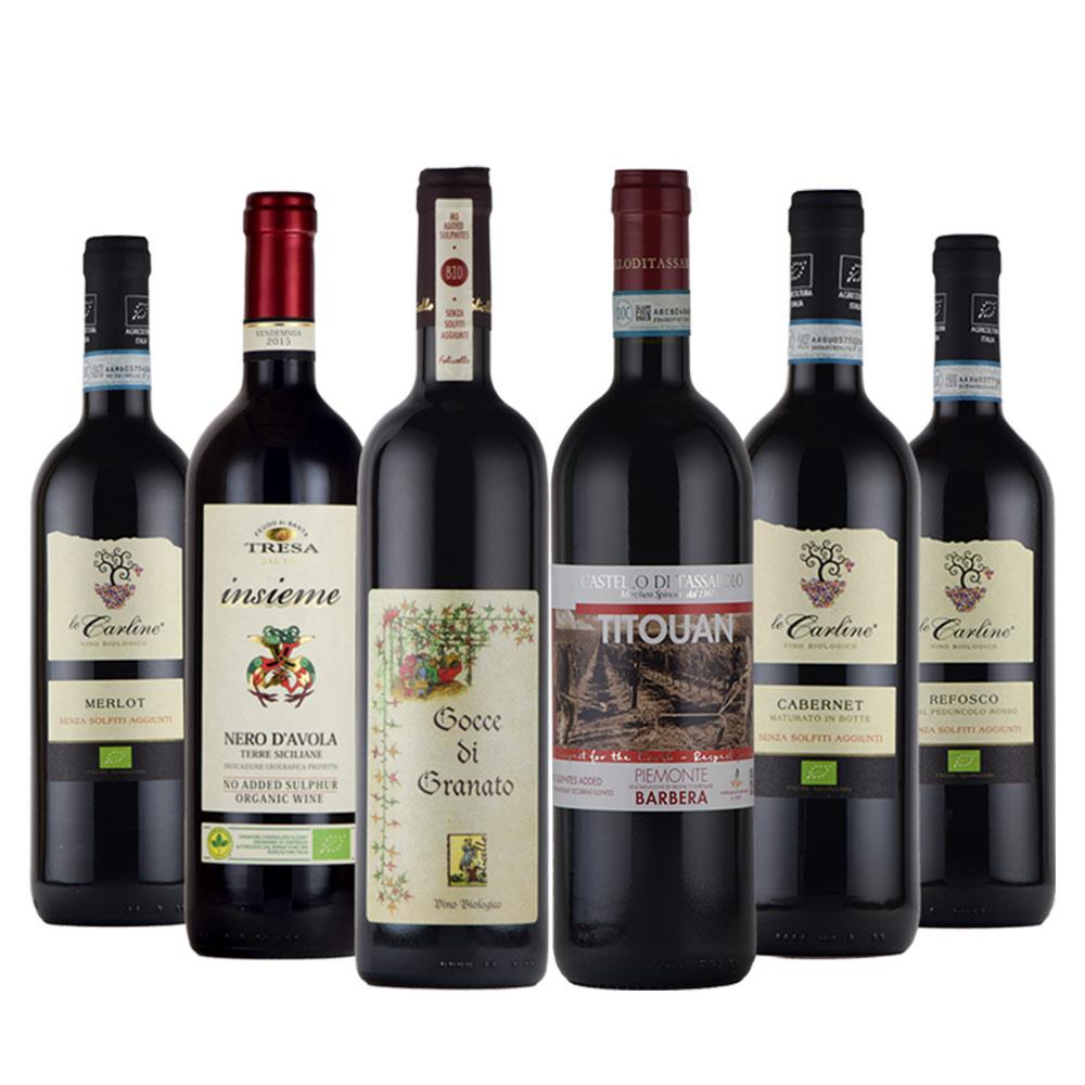 【送料0円】 送料無料 酸化防止剤無添加 イタリア 産 赤 ワイン 6本セット オーガニック, ダイブアワード 575552b0