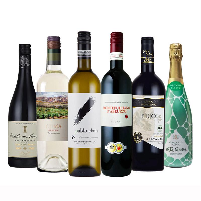 金賞ワイン入りオーガニックセット オーガニックワイン 送料無料 金賞 ワイン 入り ワインセット 赤ワイン 白ワイン スパークリング フランス スペイン 6本
