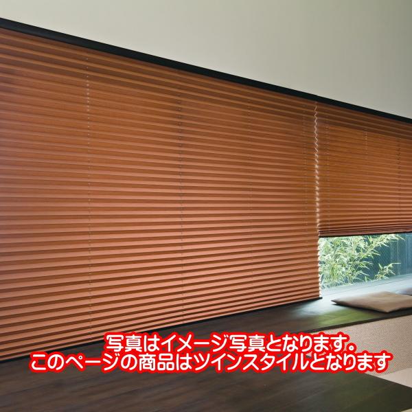 プリーツスクリーン もなみ 25mm ニチベイ アルデ 遮光 M8145~M8149 ツインスタイル(チェーン式) 幅160.5~200cm×高さ221~250cmまで